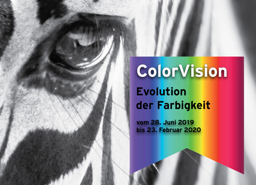 ColoVision Textbild Ausschnitt Plakatmotiv