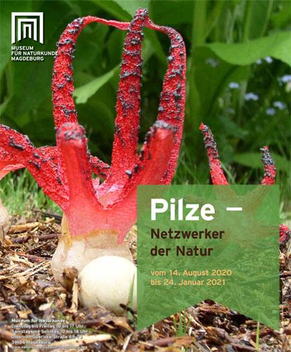 Ausstellung Pilze Titelbild